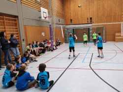 volleyball u12 fds005